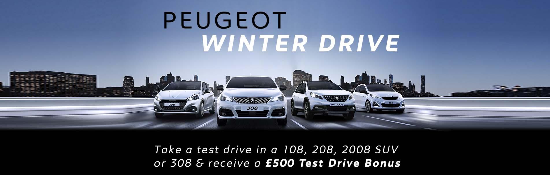 peugeot-winter-drive-test-drive-bonus-sli