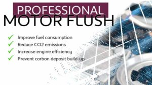 professional-motor-flush-charters-ssangyon-reading