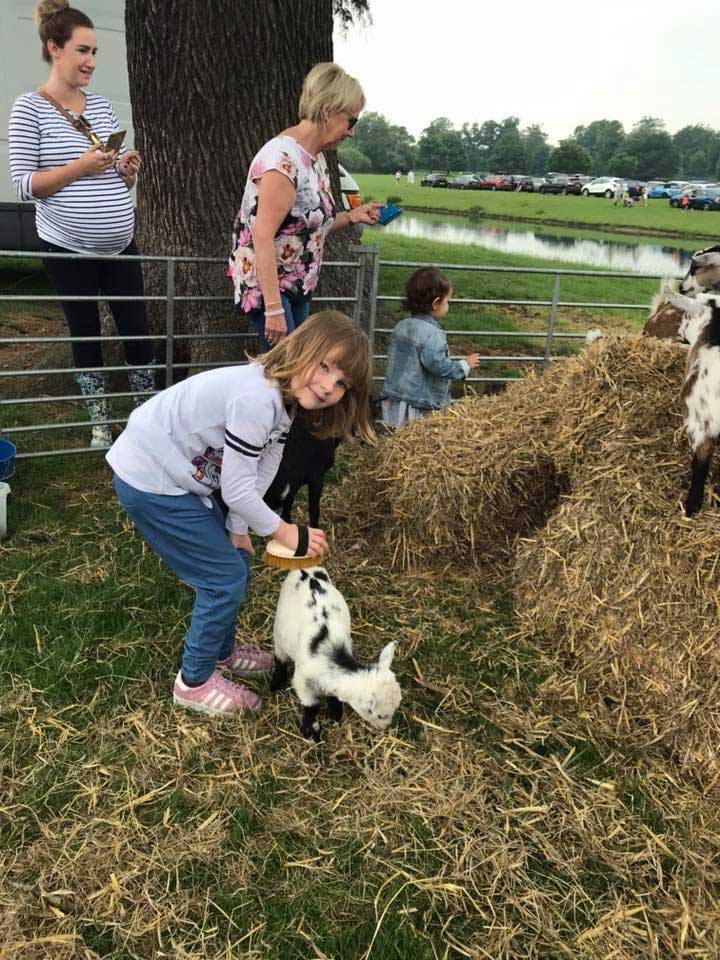 animal-petting-berkshire-country-fayre-2019-englefield-estate-theale-1