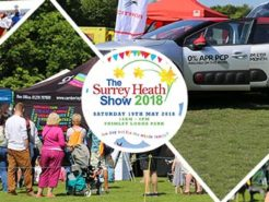 surrey-heath-show-citroen-2018-nwn